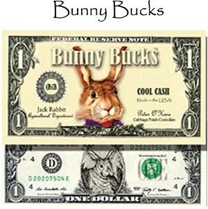 bunny16-300b